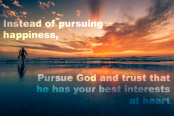 Instead of pursuing happiness...
